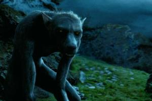 professor lupin as werewolf