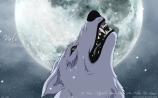 kiba-wolfs-rain-full-942493