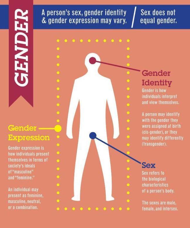 99e09d9a511a49539708036dc24e0125--trans-gender-genderqueer.jpg